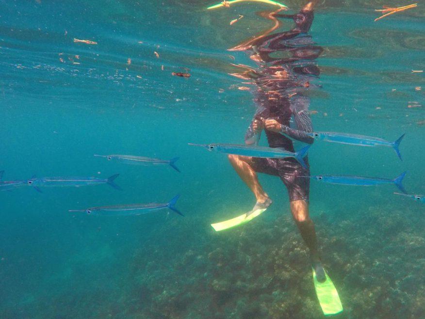 Bounty Island Fiji Day Trip