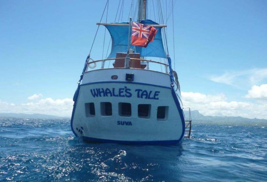 Whales Tale Schooner Full Day Sailing, Lunch on Private Island - save $20